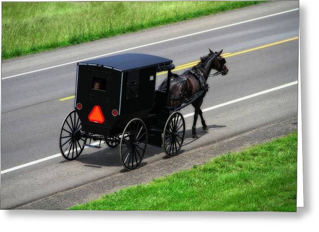 Old Country Roads Greeting Cards - Amish Horse And Buggy In Ohio Greeting Card by Dan Sproul