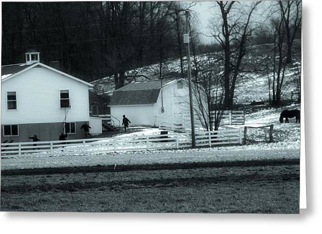 School Houses Greeting Cards - Amish In Ohio Greeting Card by Dan Sproul