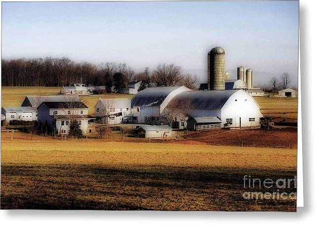 Amish Farms Greeting Cards - Amish Laundry Day Greeting Card by Skip Willits