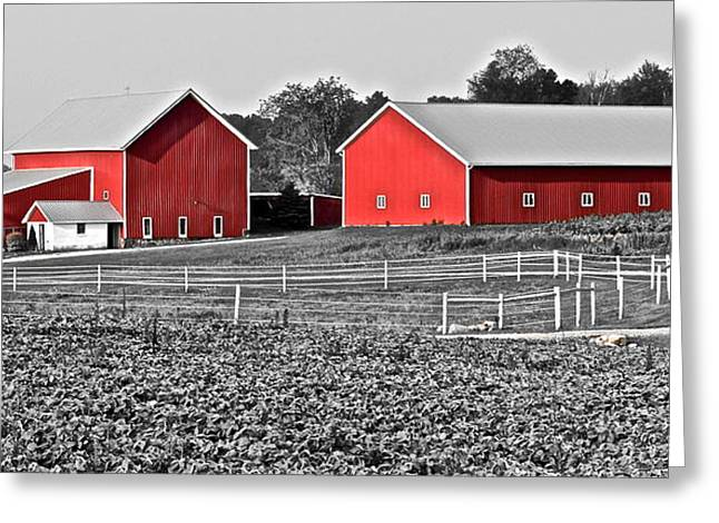 Amish Greeting Cards - Amish Red Barn and Farm Greeting Card by Frozen in Time Fine Art Photography