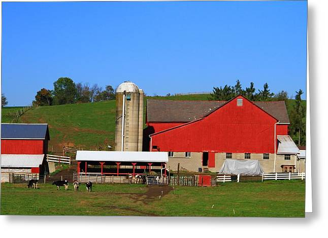 Amish Greeting Cards - Amish Red Barn Greeting Card by Dan Sproul