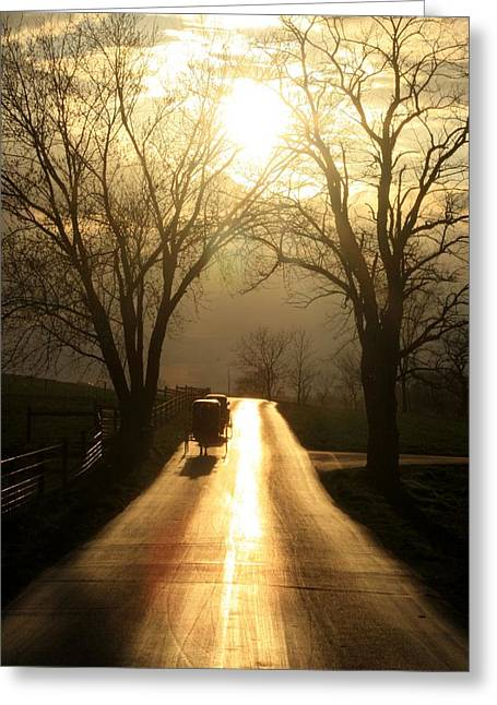 Horse And Buggy Greeting Cards - Amish Road Greeting Card by Doug Hoover