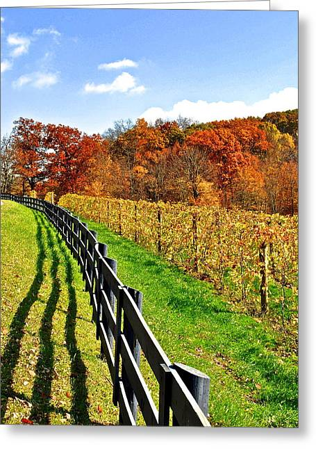 Grape Vine Greeting Cards - Amish Vinyard Greeting Card by Frozen in Time Fine Art Photography