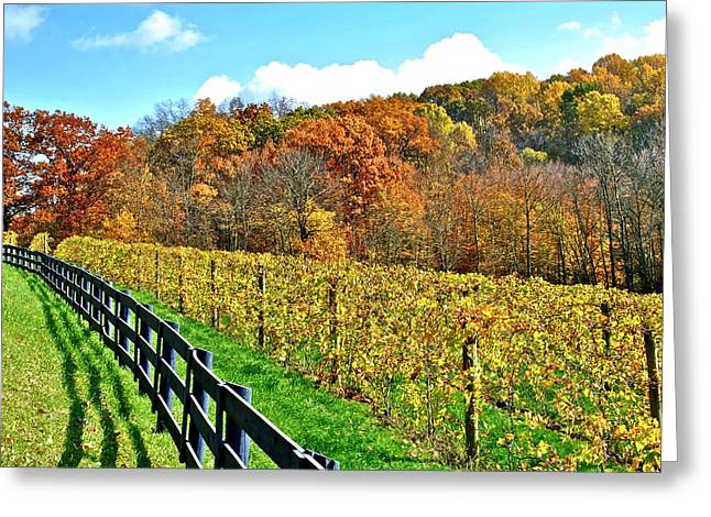 Amish Vinyard Two Greeting Card by Frozen in Time Fine Art Photography