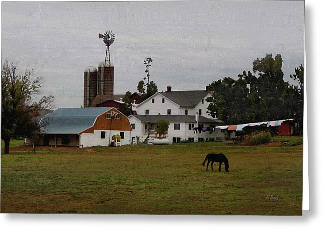 Amish Wash Day Greeting Card by Gordon Beck