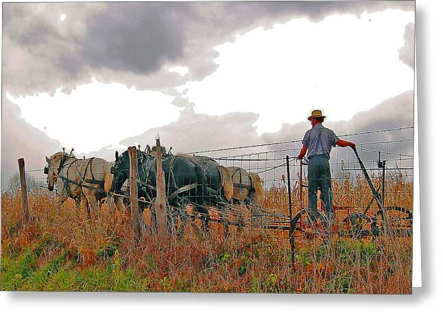 Amishman Driving Plow Greeting Card by Brian Graybill