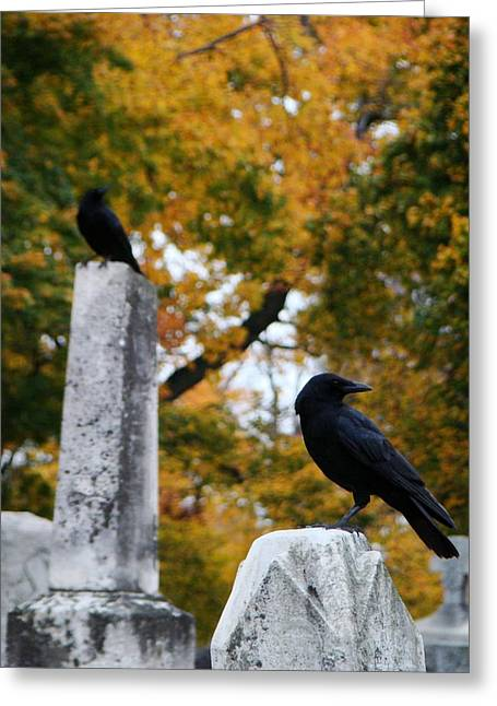 Ravens In Graveyard Greeting Cards - Among The Autumn Colors Greeting Card by Gothicolors Donna Snyder