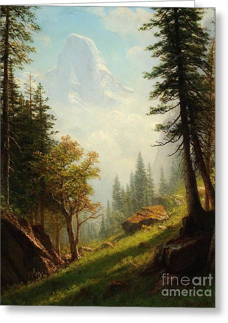 Steer Greeting Cards - Among the Bernese Alps Greeting Card by Albert Bierstadt