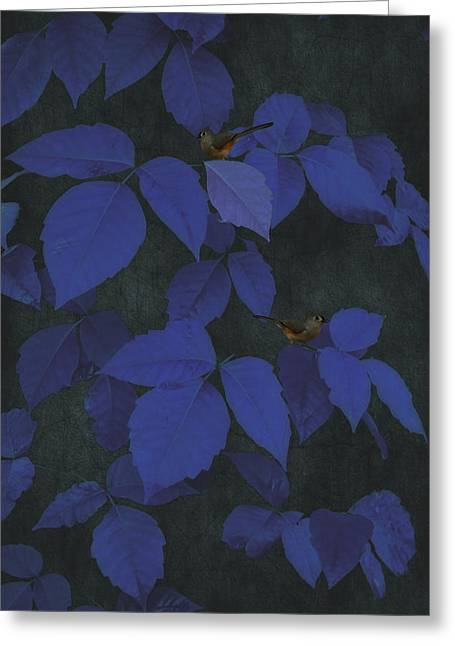 Thomas York Greeting Cards - Among The Blue Leaves Greeting Card by Tom York Images