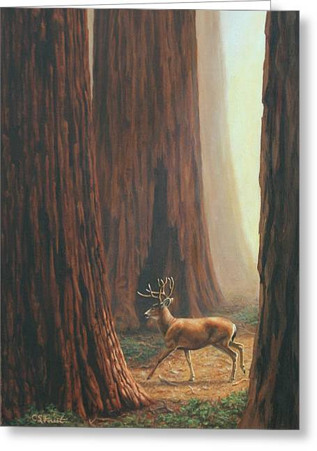 Stag Greeting Cards - Sequoia Trees - Among the Giants Greeting Card by Crista Forest