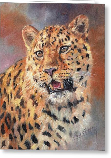 Big Cat Print Greeting Cards - Amur Leopard Greeting Card by David Stribbling