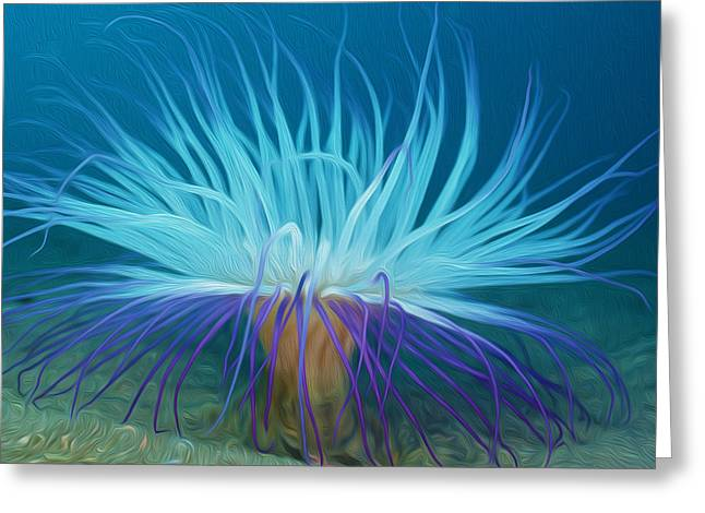 Sealive Paintings Greeting Cards - An abstract scene of sea anemone 1 Greeting Card by Lanjee Chee
