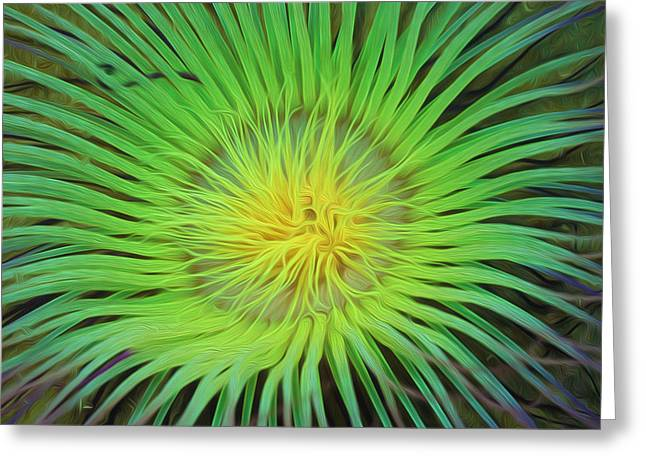 Sealive Paintings Greeting Cards - An abstract scene of sea anemone 2 Greeting Card by Lanjee Chee