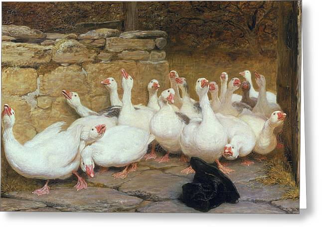 Geese Paintings Greeting Cards - An Anxious Moment, 1878 Greeting Card by Briton Riviere