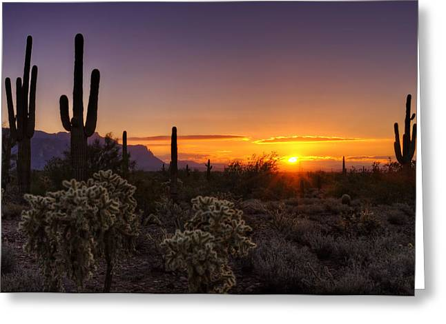 The Superstitions Greeting Cards - An Arizona Winter Sunrise Greeting Card by Saija  Lehtonen