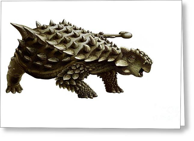 Armor Concept Greeting Cards - An Armored Saichania Ankylosaurid Greeting Card by Yuriy Priymak