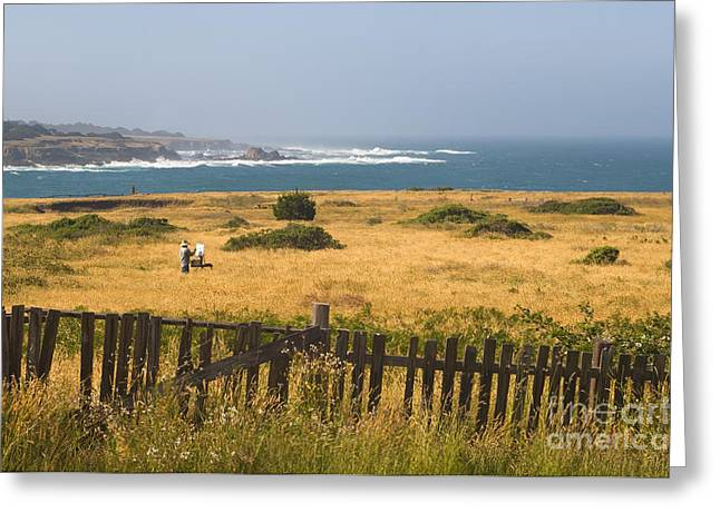 Pastimes Greeting Cards - An Artist In The Mendocino Headlands Greeting Card by Ron Sanford