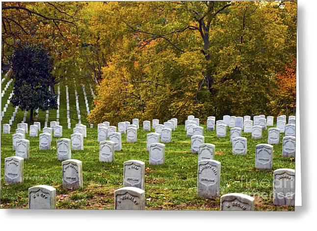 National Cemetery Greeting Cards - An Autumn Day in Arlington Greeting Card by Paul W Faust -  Impressions of Light