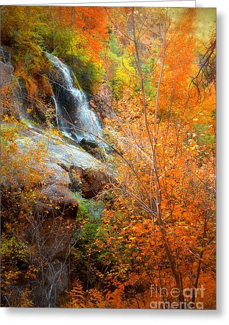 Naramata Greeting Cards - An Autumn Falls Greeting Card by Tara Turner