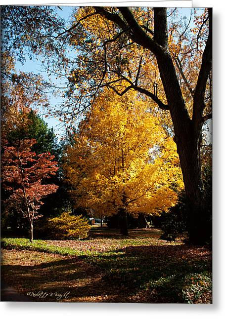 Corporate Elites Greeting Cards - An Autumn Holdout - Davidson College Greeting Card by Paulette B Wright