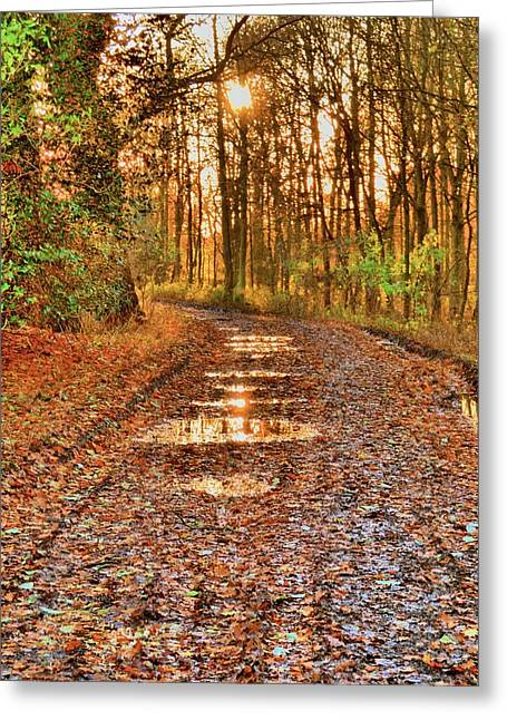 Dave Woodbridge Greeting Cards - An Autumn Track Greeting Card by Dave Woodbridge