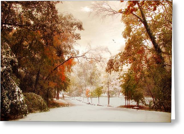 Snow Path Greeting Cards - An Early Winter Greeting Card by Jessica Jenney