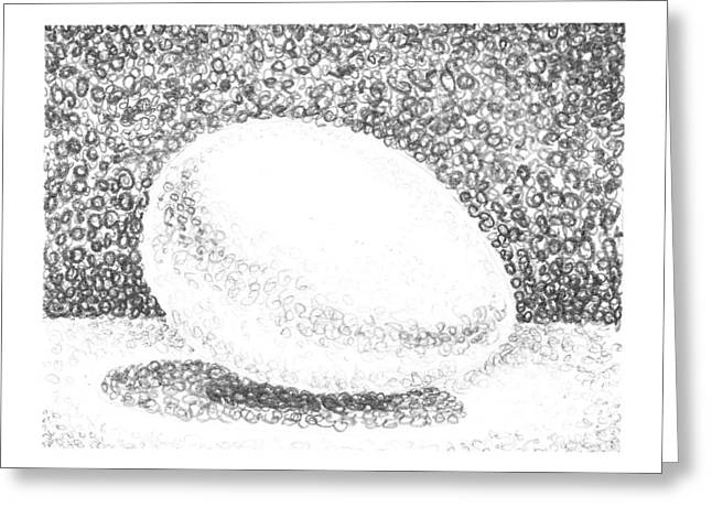 Shadows Drawings Greeting Cards - An Egg Study Two Greeting Card by Irina Sztukowski