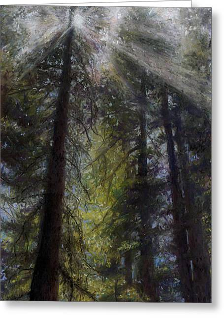 Fog Pastels Greeting Cards - An Enchanted Forest Greeting Card by Mary Giacomini