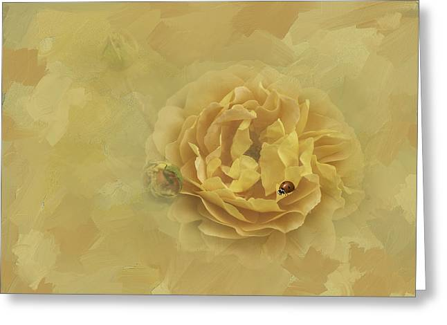 Apricot Greeting Cards - An English Rose Greeting Card by Diane Schuster