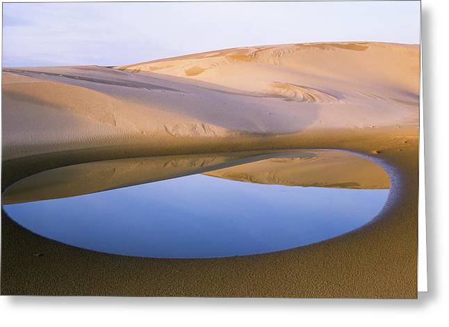An Ephemeral Pond Mirrors The Umpqua Greeting Card by Robert L. Potts