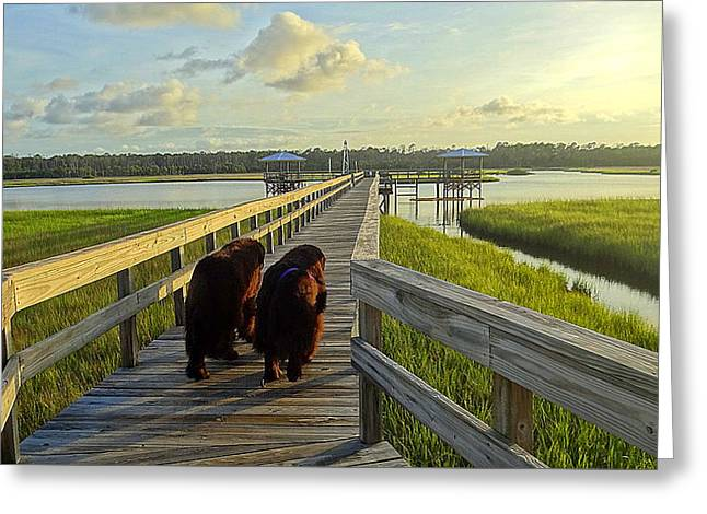 Us1 Greeting Cards - An Evening Stroll Greeting Card by Edie Mendenhall