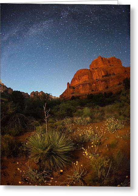 Night Photography Workshop Greeting Cards - An Image Of Seasonal Confusion In Arizona Greeting Card by Mike Berenson