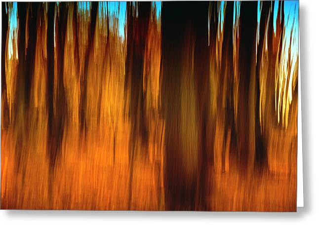 An Impressionistic In-camera Blur Greeting Card by Rona Schwarz