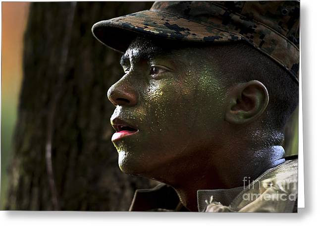 Perspiration Greeting Cards - An Infantry Training Battalion Student Greeting Card by Stocktrek Images