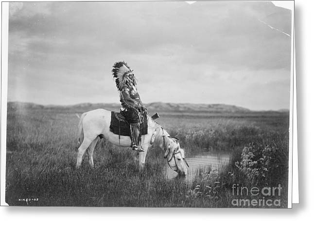 Oglala Greeting Cards - An oasis in the Badlands Greeting Card by Celestial Images