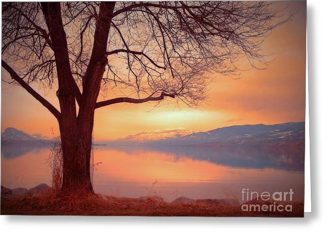 Okanagan Valley Greeting Cards - An Okanagan Glow Greeting Card by Tara Turner