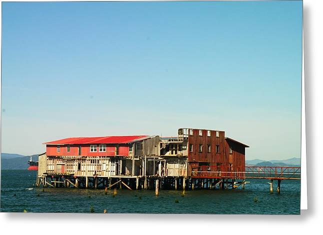 Wood Pier Greeting Cards - An Old Fishery Greeting Card by Jeff  Swan