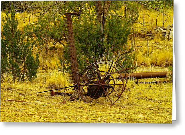 Metal Tires Greeting Cards - An Old Grass Cutter In Lincoln City New Mexico Greeting Card by Jeff  Swan