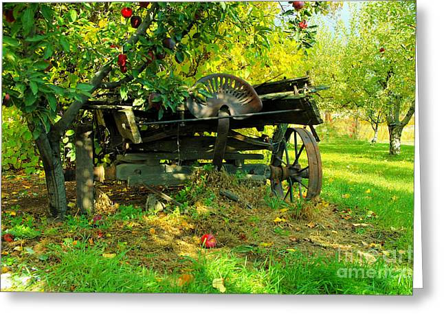 An Old Harvest Wagon Greeting Card by Jeff Swan