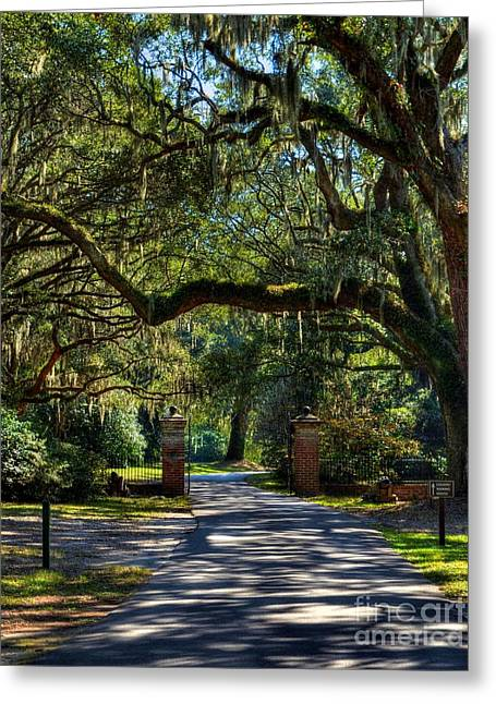Charleston Pathway Greeting Cards - An Open Gate 3 Greeting Card by Mel Steinhauer