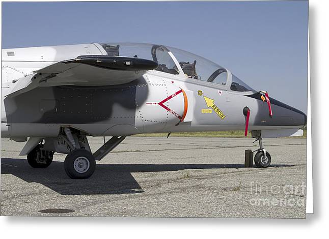 211 Greeting Cards - An S-211 Jet Trainer Aircraft Greeting Card by Luca Nicolotti
