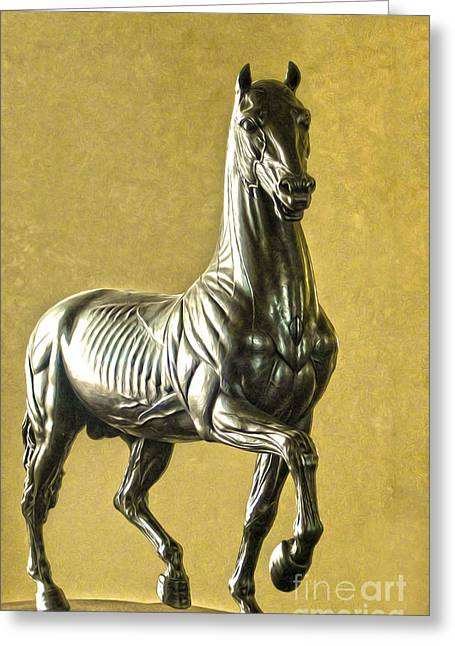 Gregory Dyer Digital Greeting Cards - Anatomical Horse Greeting Card by Gregory Dyer