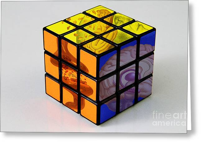 Rubiks Cube Greeting Cards - Anatomical Rubiks Cube Greeting Card by Spencer Sutton