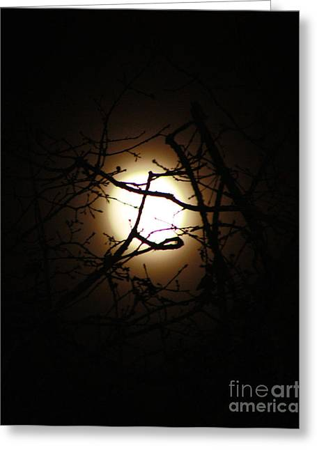 Samhain Greeting Cards - Ancestral Call Greeting Card by C E Dyer