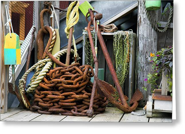 Netting Greeting Cards - Anchor and Chain Greeting Card by Betsy C  Knapp