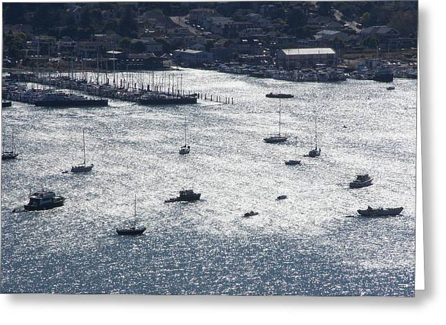 Sausalito Greeting Cards - Anchorage Off Of Sausalito Greeting Card by Scott Lenhart