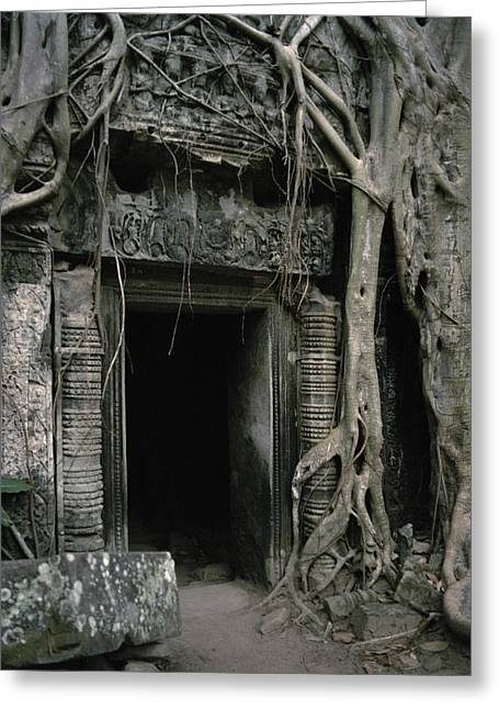 Temple Of Ta Prohm Greeting Cards - Ancient Angkor Greeting Card by Shaun Higson