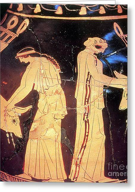 Sacrificial Art Greeting Cards - Ancient Greek Preparation Ofi Greeting Card by Photo Researchers