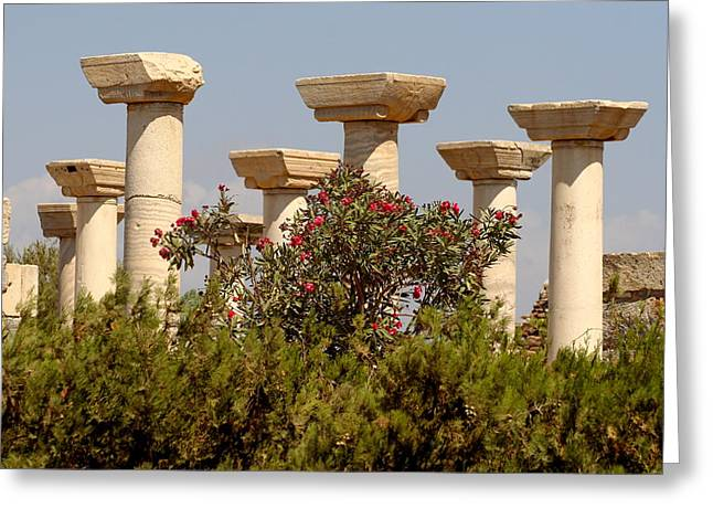 Selcuk Greeting Cards - Ancient Monument in Selcuk Turkey Greeting Card by Ronald Jansen