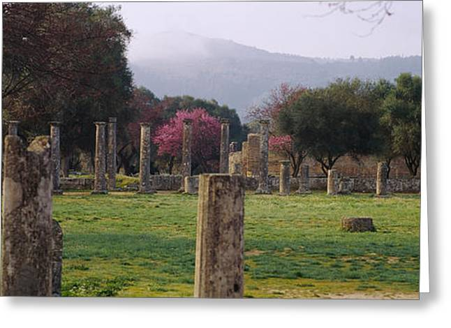 Civilization Greeting Cards - Ancient Olympia, Olympic Site, Greece Greeting Card by Panoramic Images